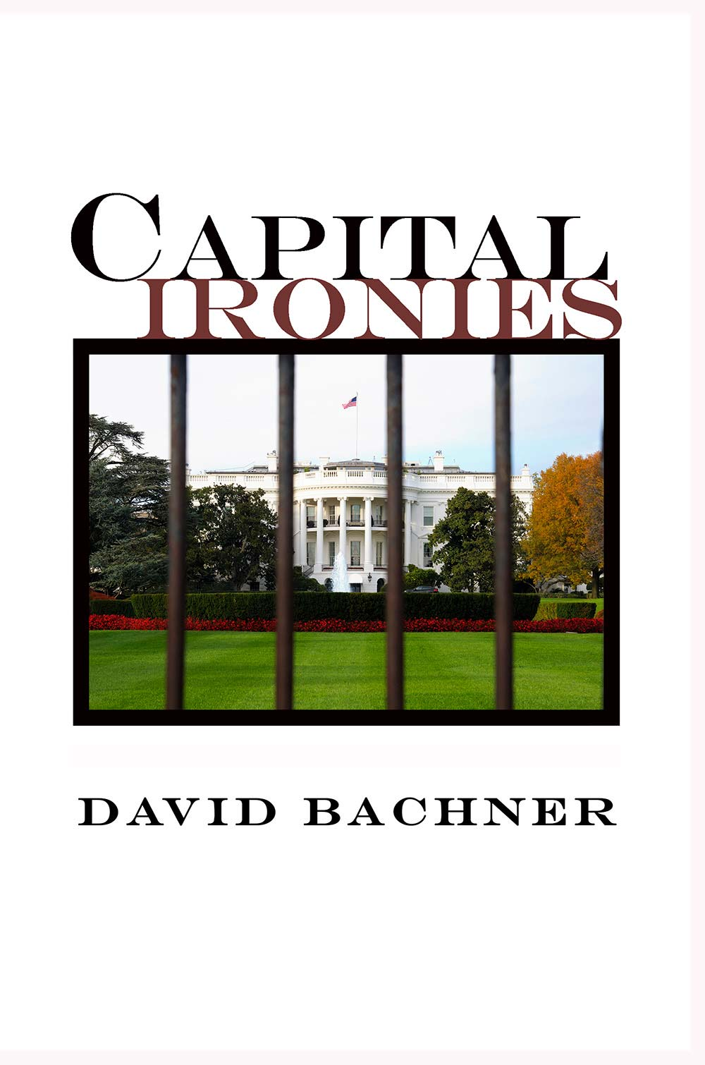 Capital Ironies book cover