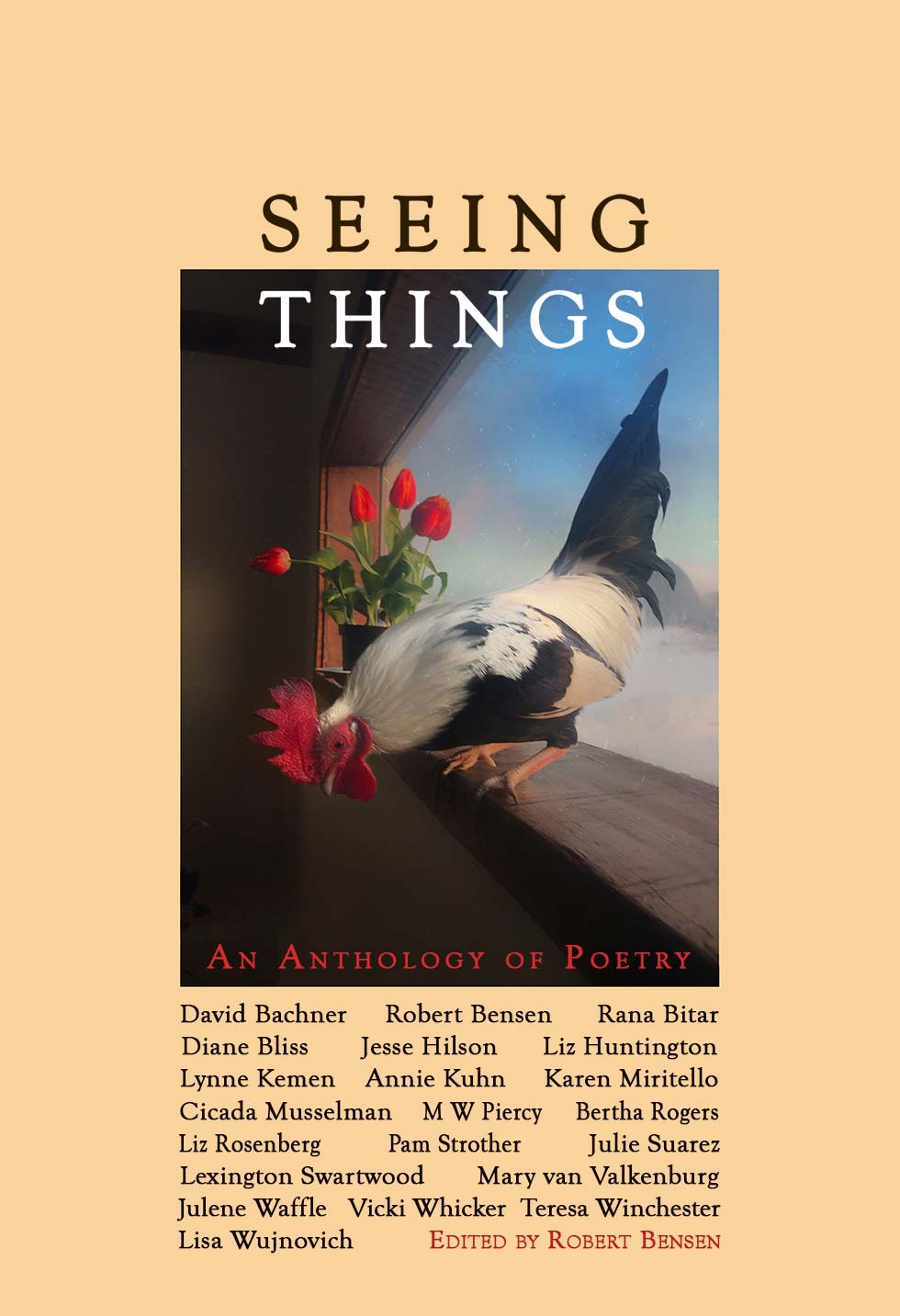 Seeing Things book cover