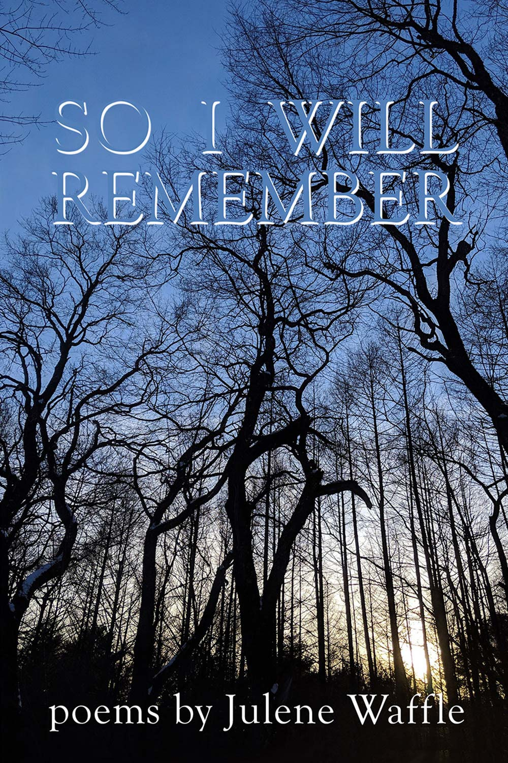 So I Will Remember book cover
